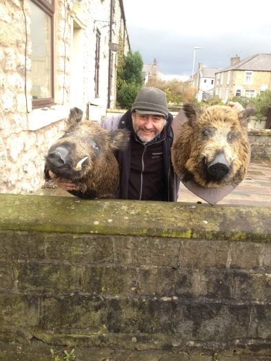 Boars Heads